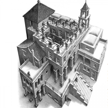 Escher - building capacity?