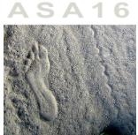 ASA16